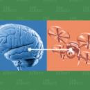 Военные пилоты смогут одновременно контролировать сразу три летательных аппарата с помощью нейронного имплантата