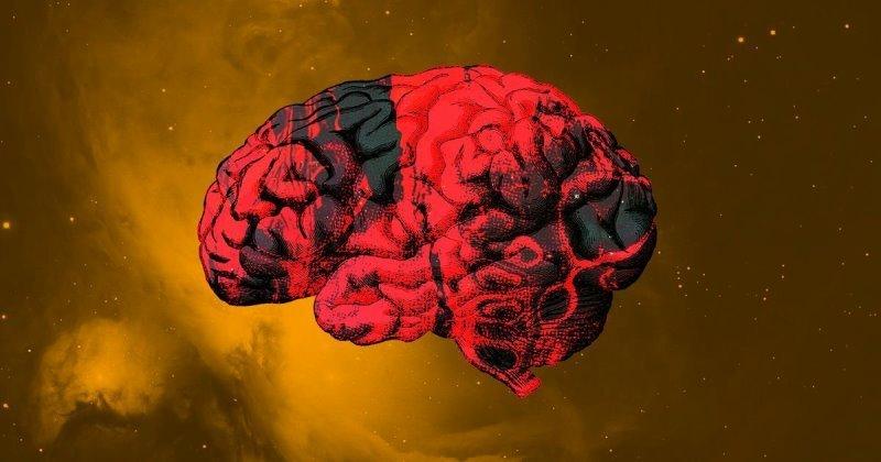 Отсутствие гравитации вызывает ужасные изменения в мозге космонавтов