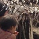 Ученые призывают пока не поздно создать «Ноев ковчег» для бактерий