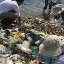 Микропластик, впервые обнаруженный в отходах жизнедеятельности людей, может быть опасным для здоровья