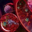 Новая технология распознавания рака позволяет быстрее и точнее определить местоположение опухоли