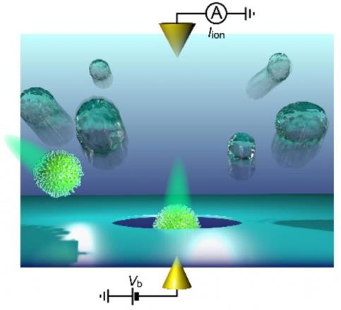 Обнаружение нанопор одиночных вирусов гриппа поможет в борьбе с эпидемиями этого заболевания