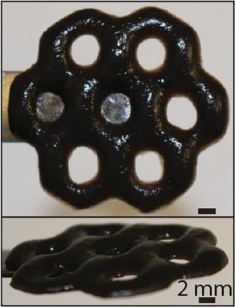 Новый «умный» материал найдёт широкое применение в биологии и медицине
