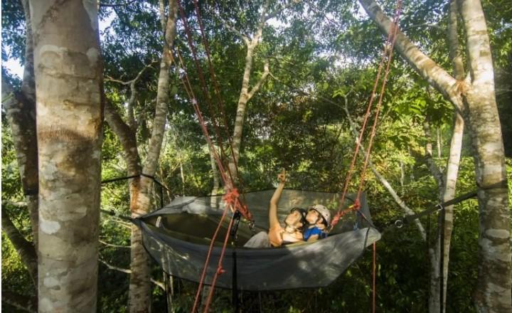 Вырубка тропических лесов Амазонии достигла максимума за десятилетие
