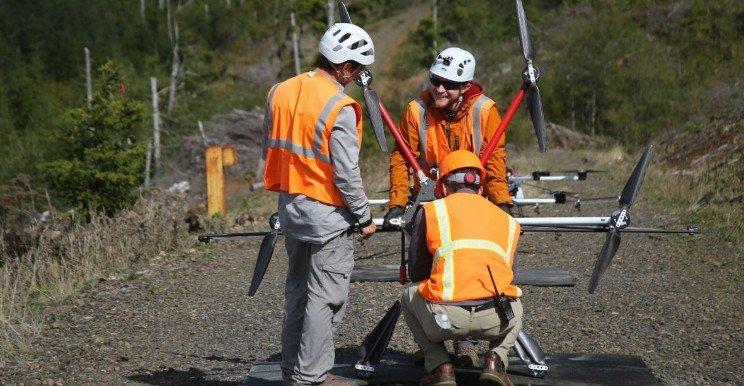 Американцы научили дроны сажать деревья
