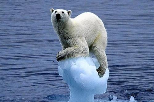 Серьезная ошибка в расчетах ставит под вопрос нашумевшее исследование глобального потепления