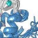 Обнаруженный в бактериях протеин поможет получать ценное сырье для цифровых устройств