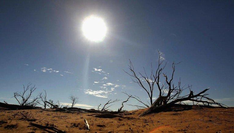 Конференция ООН по вопросам изменения климата: необходимы чрезвычайные меры