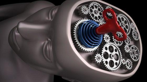 Рассекреченные документы программы MKUltra: сотрудники ЦРУ вживляли в мозг собак электроды для дистанционного управления их поведением