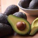 Экстракт семян авокадо обладает многообещающими противовоспалительными свойствами