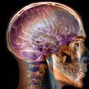 Исследование: наркоз помогает людям забыть травмирующие воспоминания