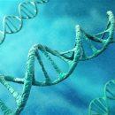 Причины онкологии записаны в ДНК опухолей, как в «черном ящике», где содержится вся информация о зарождении болезни