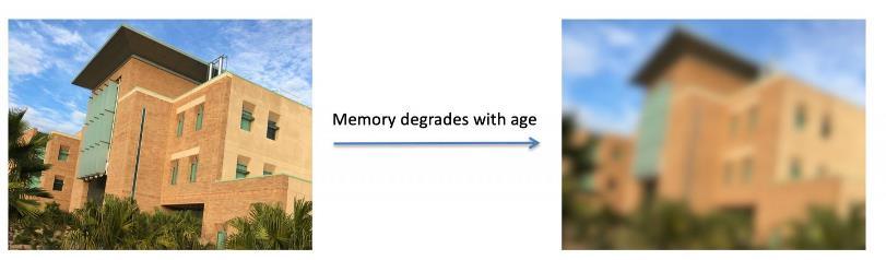 Качественный сон и хорошее настроение позволяют сохранить с возрастом хорошую рабочую память