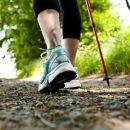 Физические упражнения «задерживают развитие» прогрессирующего рака кишечника