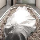 Компостирование человеческих тел вместо кремации может быть полезно для окружающей среды