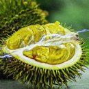 Ученые намереваются хранить энергию в несъедобных частях фруктов
