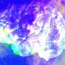 Некоторые математики полагают, что Вселенная обладает сознанием